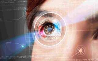 Биометрические системы защиты 2